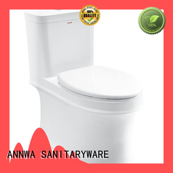 classic shape bathroom toilet double-speed household