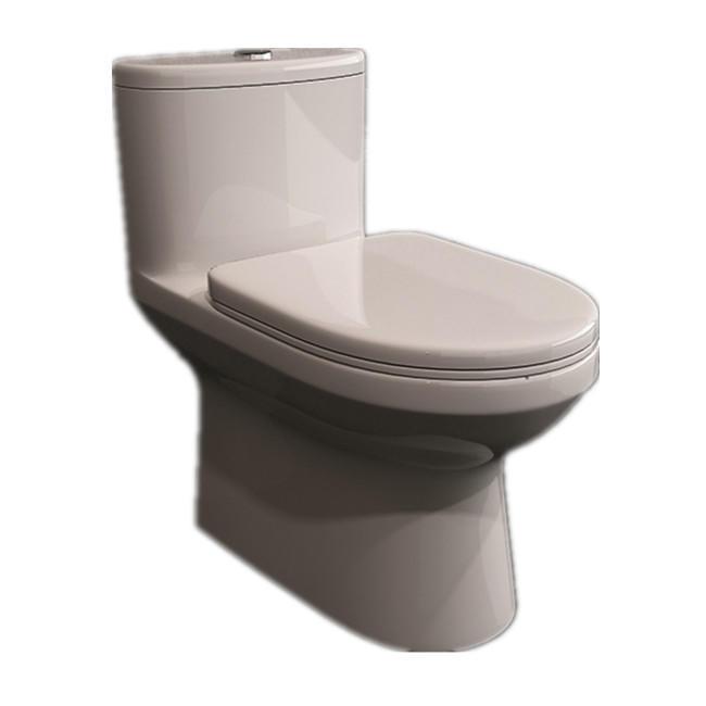 ANNWA One-piece Toilet NL101