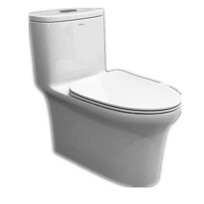 ANNWA One-piece Toilet NL103
