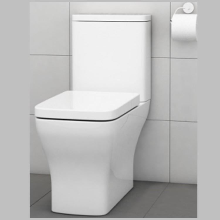 ANNWA Rimless Toilet AB2196